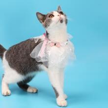 Bow Decor Lace Cat Collar