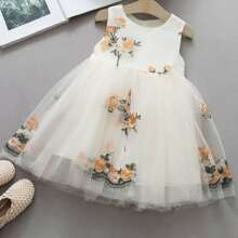 Toddler Girls Floral Embroidered Contrast Mesh Dress