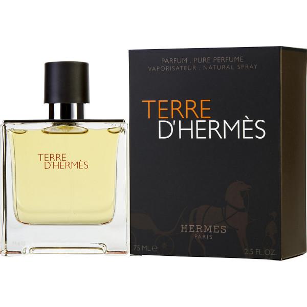 Terre dHermes - Hermes Perfume en espray 75 ML