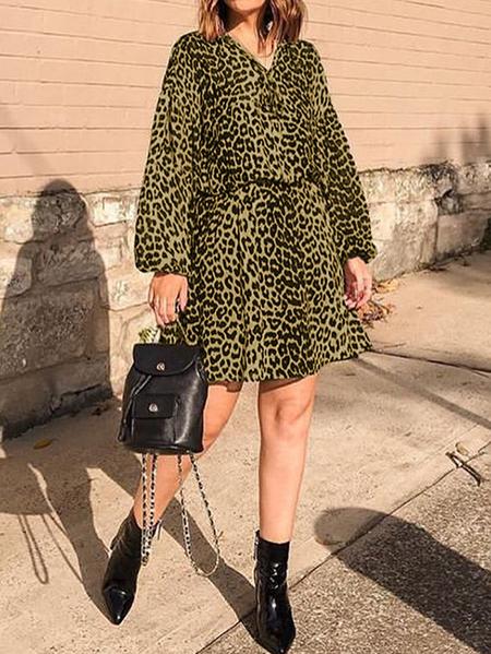 Yoins Celmia Leopard Elastic Waist Long Sleeves Dress