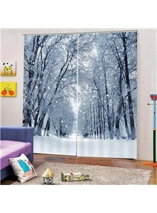 3D Winter Snow Print Blackout and Dust-proof Curtains for Living Room Bedroom