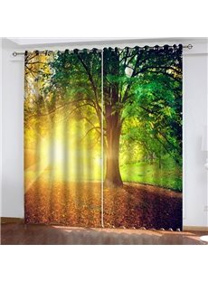 3D Fantastic Sunset View Printed Classy Blackout Curtains for Living Room and Bedroom 200g/㎡ Polyester for Better Shading Effect No Pilling No Fading
