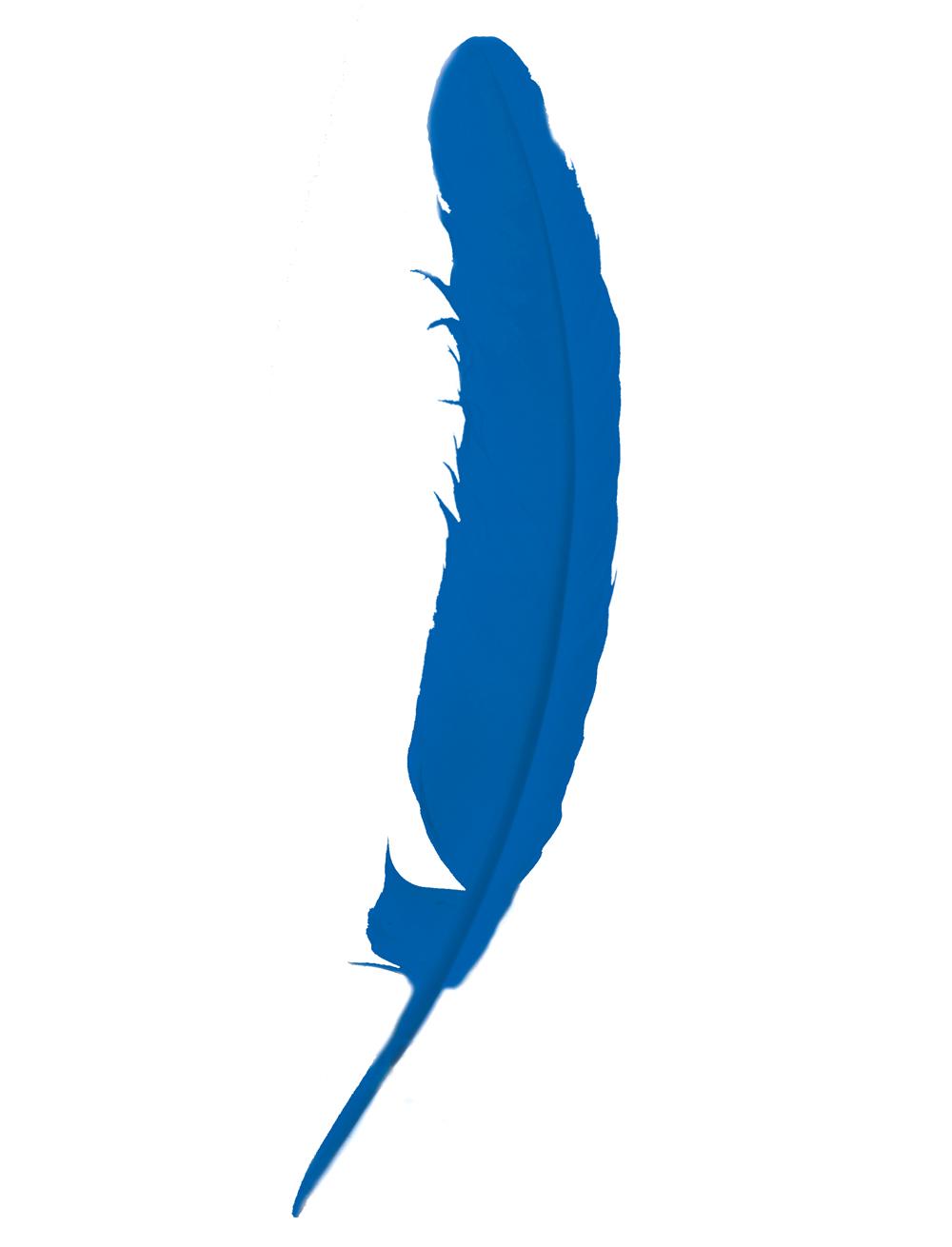 Kostuemzubehor Indianerfeder blau 25-30cm