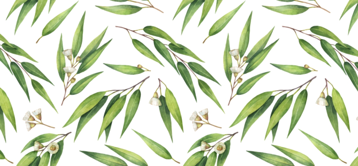 Botanical 11 oz. Pink Accent Mug, Gift -Watercolor Eucalyptus