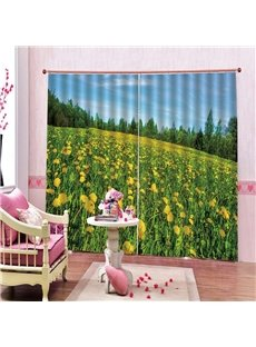 3D Digital Printing Thick Polyester Water Proof Blackout Curtain with Sunflowers Boom Pattern 200g/m² Polyester 70% Shading Rate and UV Rays Environm