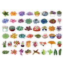 50pcs Succulent Plants Sticker
