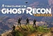 Tom Clancys Ghost Recon Wildlands Steam Gift