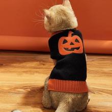Halloween Pullover mit Kuerbis Muster fuer Katzen