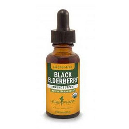Black Elderberry Glycerite 1 Oz by Herb Pharm