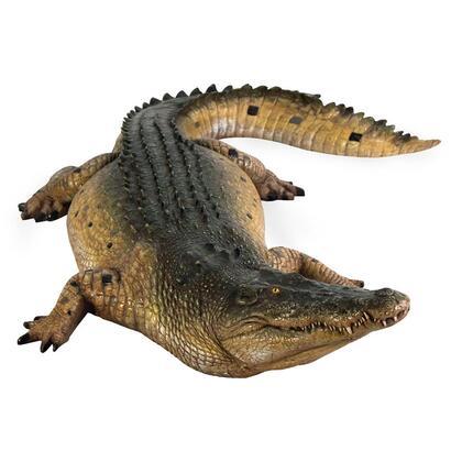 NE80123 Tropical Wetlands Crocodile