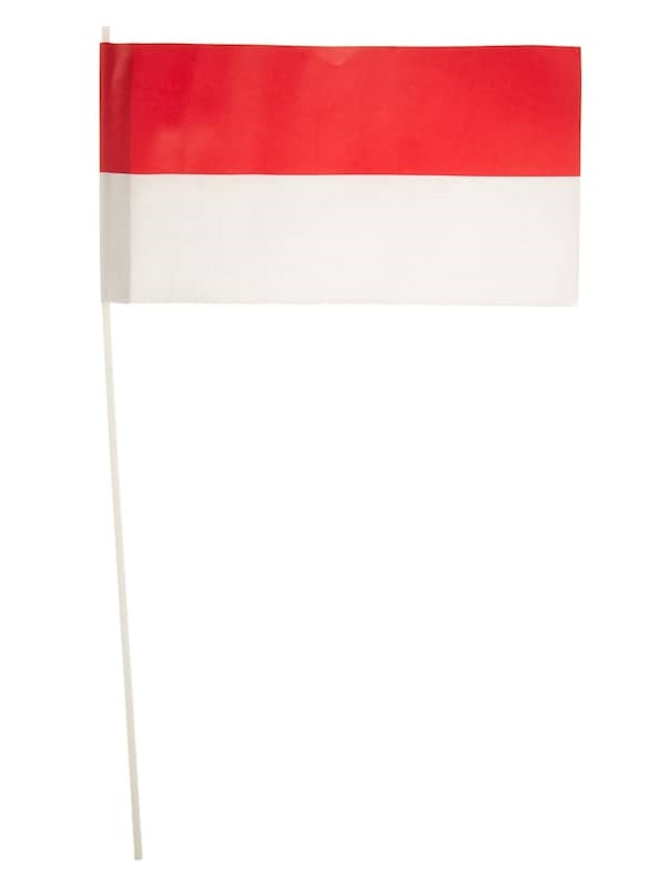 Papierfaehnchen rot/weiss 24x12cm