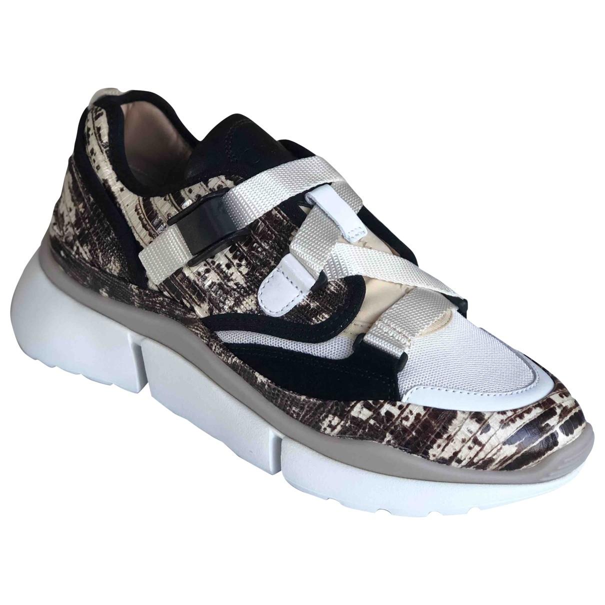 Chloe Sonnie Sneakers in  Bunt Leder