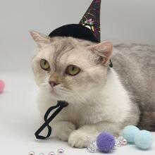 Hut mit Halloween Spinnennetz Muster fuer Katzen