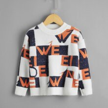Toddler Girls Letter Graphic Color-block Sweater