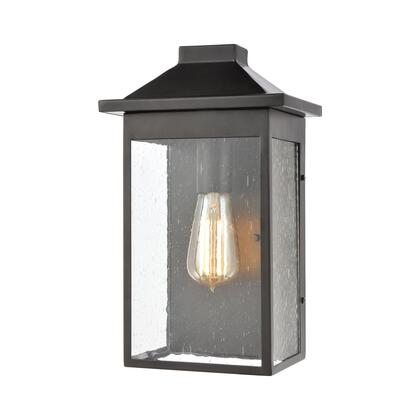 46701/1 Lamplighter 1-Light Sconce in Matte Black with Seedy