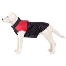 Colorblock Dog Coat