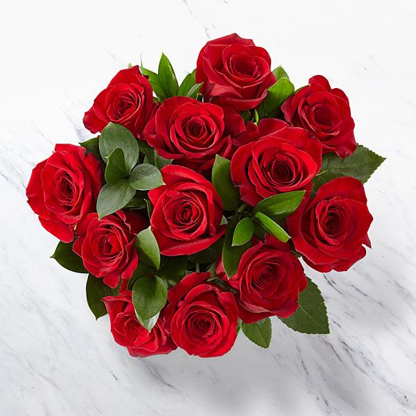 12 Red Roses, No Vase