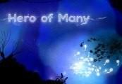 Hero of Many Steam CD Key