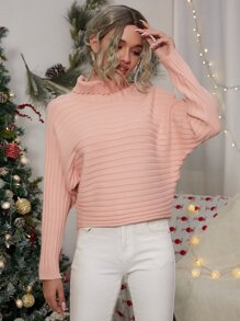 Turtle Neck Batwing Sleeve Sweater