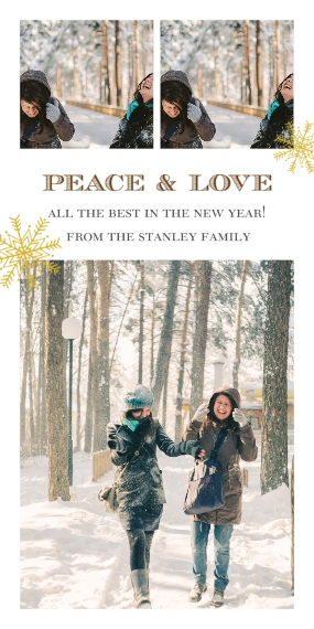 Holiday Photo Cards 4x8 Flat Card Set, 85lb, Card & Stationery -Peace & Love