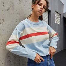 Contrast Panel Drop Shoulder Sweater