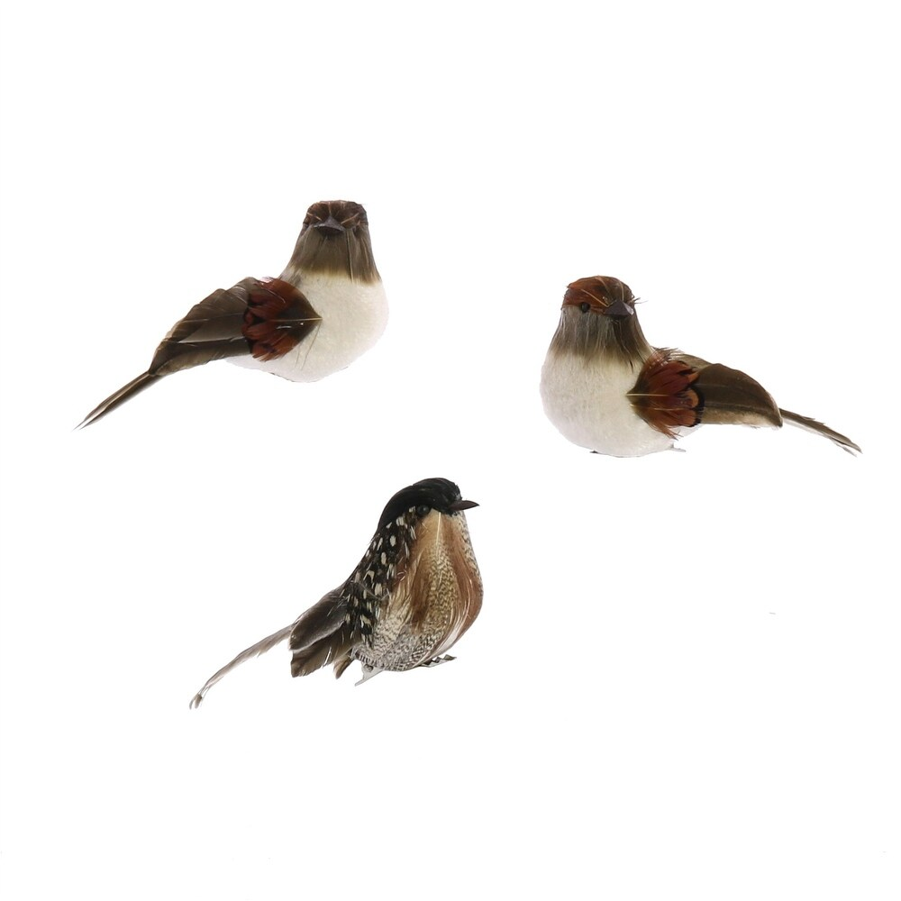 Feather Sitting Bird Accent Decor with Clips, Assortment of 3, Brown (Brown)