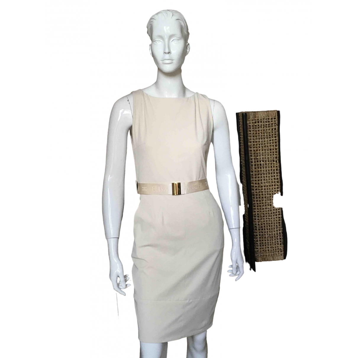 Elisabetta Franchi \N dress for Women 42 IT