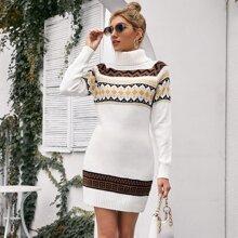 Turtle Neck Fair Isle Sweater Dress