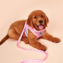1pc Reflective Dog Harness & 1pc Dog Leash