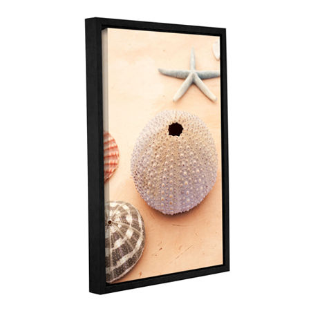 Brushstone Seashells Gallery Wrapped Floater-Framed Canvas Wall Art, One Size , White