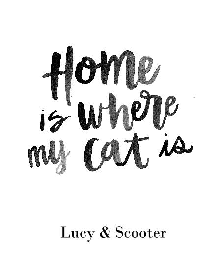 Non-Photo 11x14 Poster, Home Décor -Home Cat