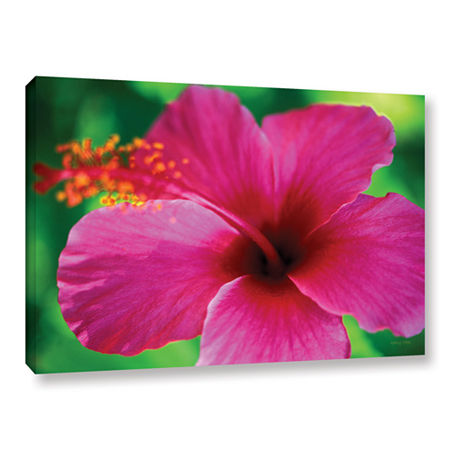 Brushstone Maui Pink Hibiscus Gallery Wrapped Canvas Wall Art, One Size , Pink