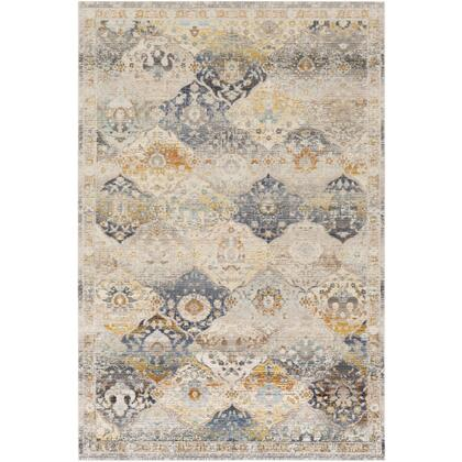 Dublin DUB-2313 311 x 57 Rectangle Traditional Rug in