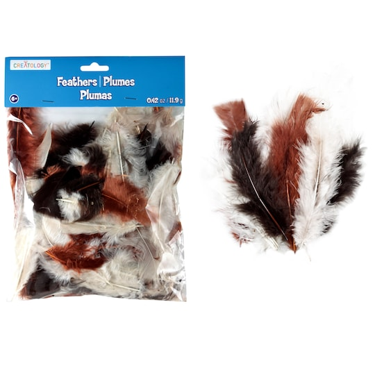 12 Pack: Earth Mix Turkey Feathers By Creatology™ | Michaels®