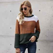 Pullover mit Bahnendesign und Raglanaermeln