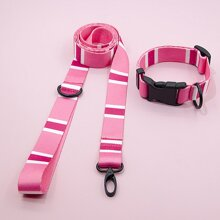 1pc Striped Dog Leash & 1pc Dog Collar