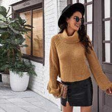 Raglan Sleeve Turtle Neck Sweater