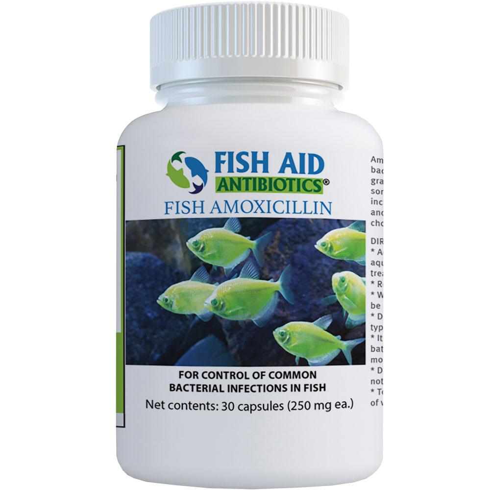 Amoxicillin Capsules 250mg (30 Capsules)