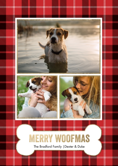 Christmas Photo Cards 5x7 Cards, Premium Cardstock 120lb with Elegant Corners, Card & Stationery -Christmas Plaid Woofmas by Tumbalina