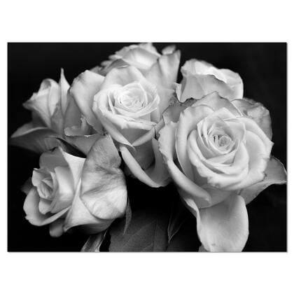 PT9986-40-30 Bunch Of Roses Black And White - Floral Art Canvas Print -