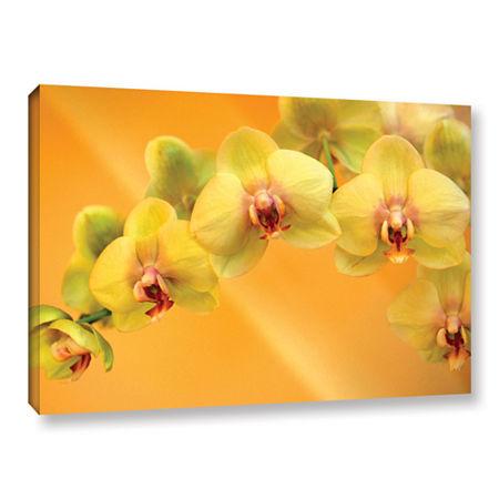 Brushstone Yellow Phalaenopsis Gallery Wrapped Canvas Wall Art, One Size , Yellow