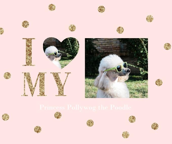 Pets Plush Fleece Photo Blanket, 50x60, Gift -Pretty Princess Pet