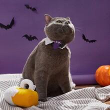 1 pieza collar con dibujos animados de gato de halloween