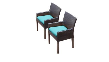 Barbados Collection BARBADOS-TKC097b-DC-C-ARUBA 2 Dining Chairs With Arms - Wheat and Aruba