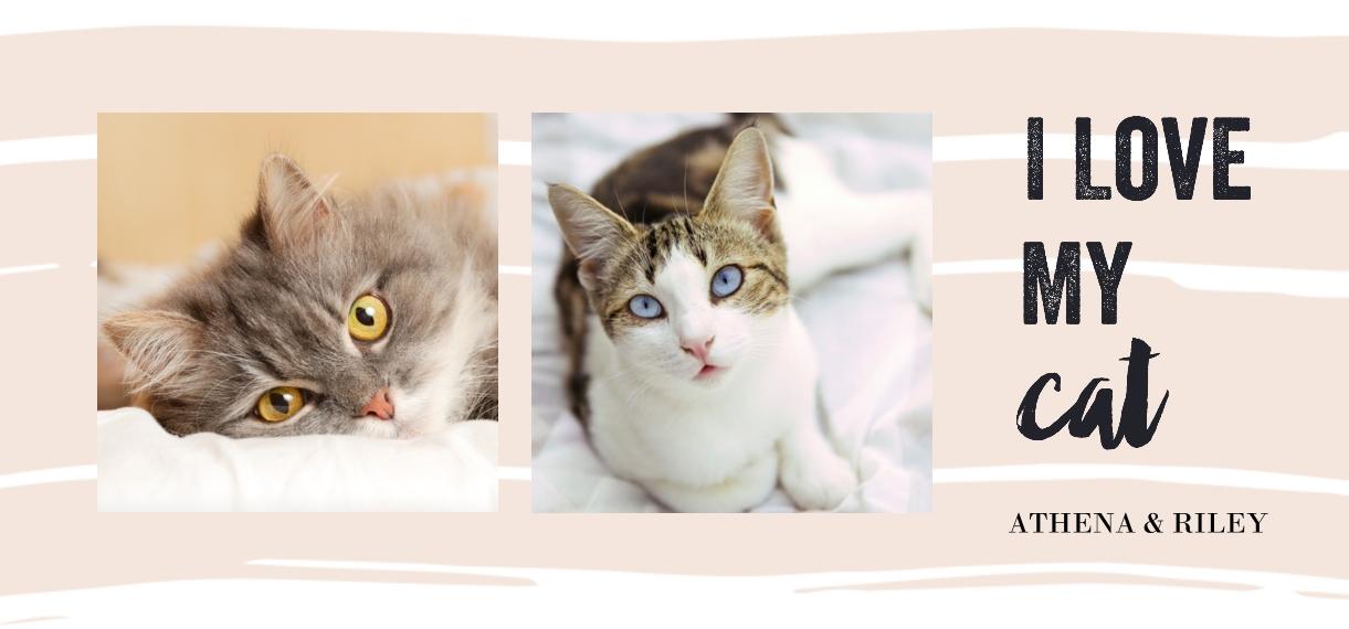Pets 11oz Hidden Picture Mug, Gift -Kitty Love
