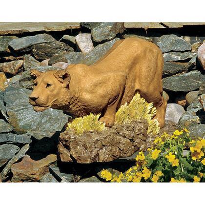 DB383079 Lioness