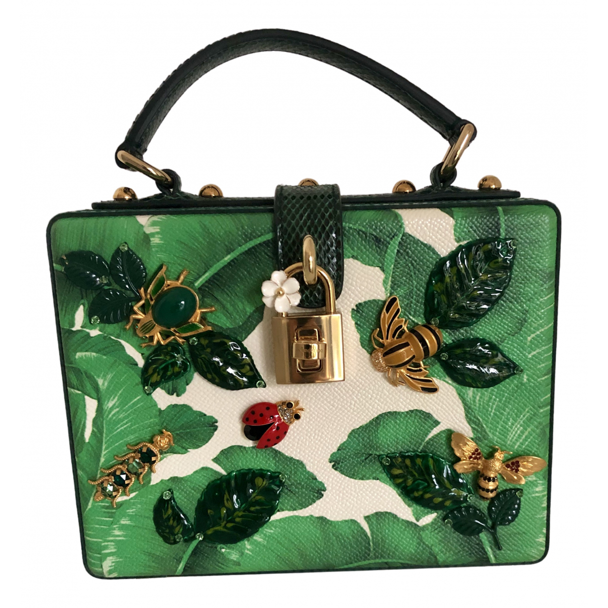 Dolce & Gabbana N Green Leather handbag for Women N