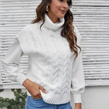Turtle Neck Solid Knit Top Without Blouse