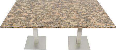 G217 30X72-SS05-17D 30x72 Giallo Fiorito Granite Tabletop with 17