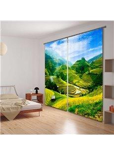 3D Green Terraced Fields Printed Pastoral Style Light Custom Energy Saving Curtain